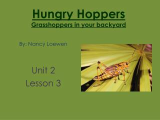 Hungry Hoppers Grasshoppers in your backyard