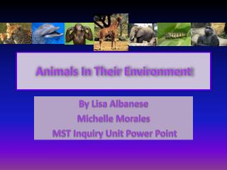 Animals In Their Environment