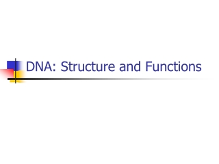 DNA Structure and Functions