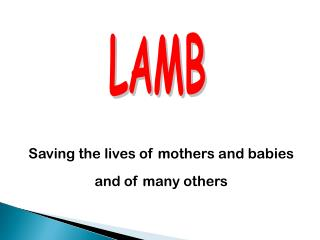Saving the lives of mothers and babies