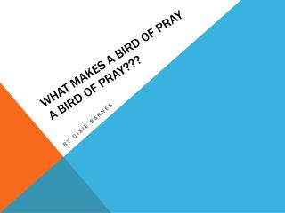 What makes a bird of pray a bird of pray???