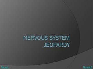 Nervous System Jeopardy