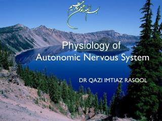 Physiology of Autonomic Nervous System