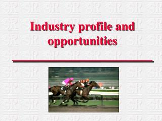 Industry profile and opportunities
