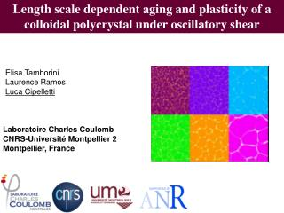Length scale dependent aging and plasticity of a colloidal  polycrystal  under oscillatory shear