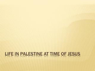Life in Palestine at time of Jesus