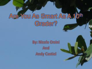 Are You  A s Smart As A 10 th  Grader?