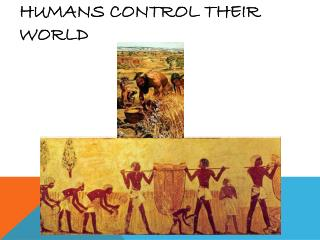Humans Control Their World