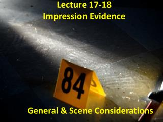 Lecture 17-18 Impression Evidence