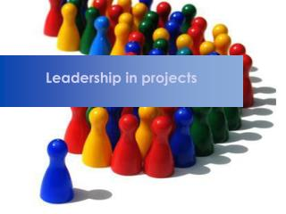 Leadership  in  projects