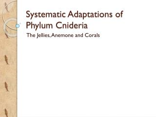 Systematic Adaptations of Phylum  Cnideria