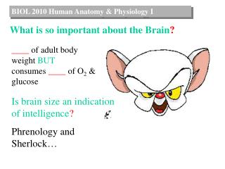 BIOL  2010  Human Anatomy &  Physiology I