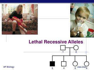 Lethal Recessive Alleles