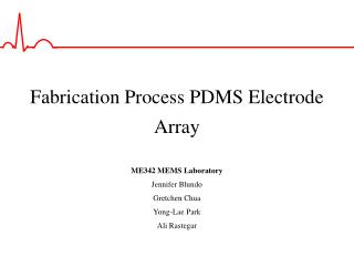 Fabrication Process PDMS Electrode Array