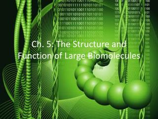 Ch. 5: The Structure and Function of Large Biomolecules