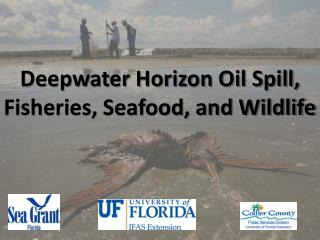 Deepwater Horizon Oil Spill, Fisheries, Seafood, and Wildlife