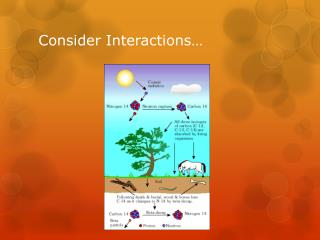Consider Interactions…