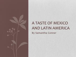 A taste of Mexico and Latin America