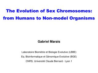 The Evolution of Sex Chromosomes: from Humans to Non-model Organisms