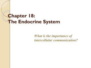 Chapter 18:  The Endocrine System