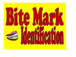 Forensic dentists use several different terms to describe the type of bite mark: