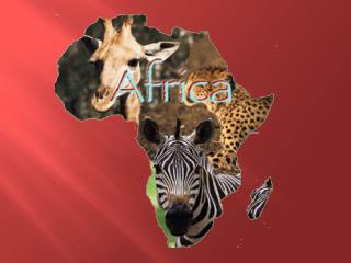 About Africa