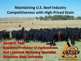 Maintaining U.S. Beef Industry Competitiveness with High-Priced Grain