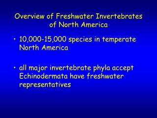 Overview of Freshwater Invertebrates of North America