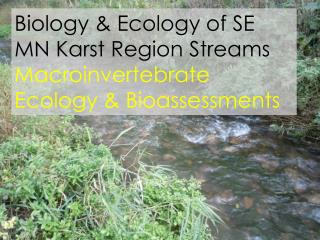 Biology & Ecology of SE MN  Karst  Region Streams Macroinvertebrate  Ecology &  Bioassessments
