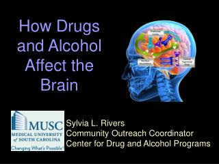 Sylvia L. Rivers Community Outreach Coordinator Center for Drug and Alcohol Programs
