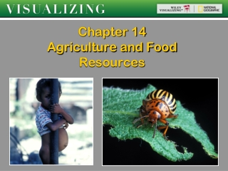 Chapter 14 Agriculture and Food Resources