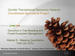 Genomics in Tree Breeding and Forest Ecosystem Management -----