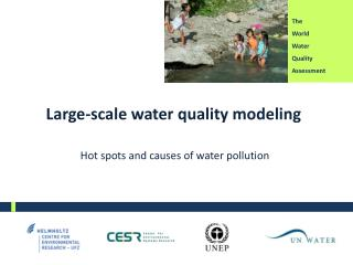 Large- scale water quality modeling