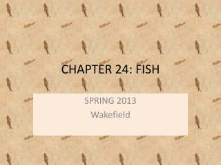 CHAPTER 24: FISH