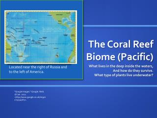The Coral Reef Biome (Pacific)