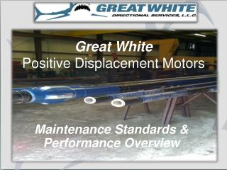 Great White                  Positive Displacement Motors