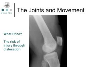 The Joints and Movement