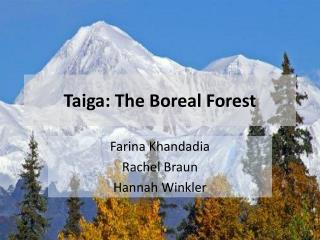 Taiga: The Boreal Forest
