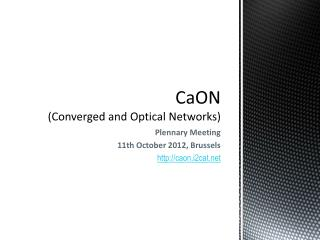 CaON (Converged and Optical Networks)