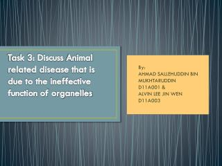 Task 3: Discuss  Animal  related disease that is due to the ineffective function of organelles