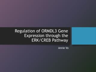 Regulation of ORMDL3 Gene Expression through the ERK/CREB Pathway