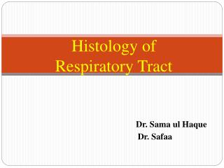 Histology of  Respiratory Tract