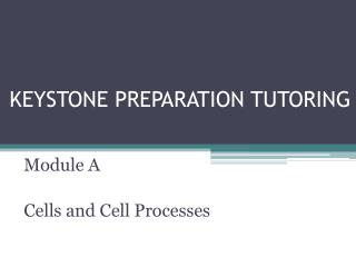 KEYSTONE PREPARATION TUTORING