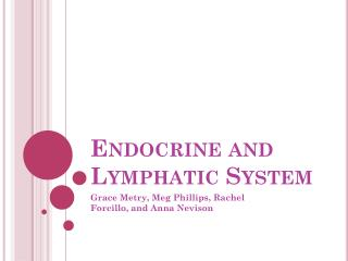 Endocrine and Lymphatic System
