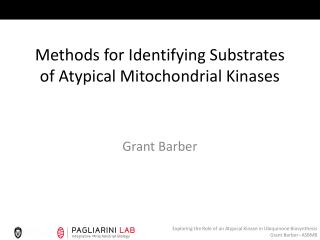 Methods for Identifying Substrates of Atypical Mitochondrial Kinases