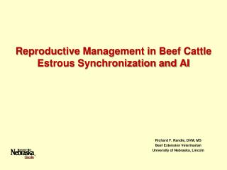 Reproductive Management in Beef Cattle Estrous Synchronization and AI