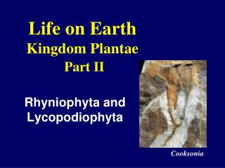 Life on Earth Kingdom Plantae Part II