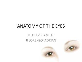 ANATOMY OF THE EYES