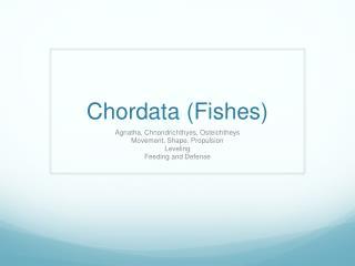 Chordata (Fishes)