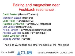 Pairing and magnetism near Feshbach  resonance